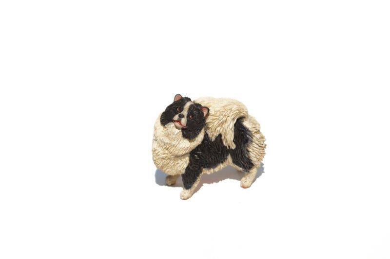 Dixie (Pomeranian) Black and white 800X600