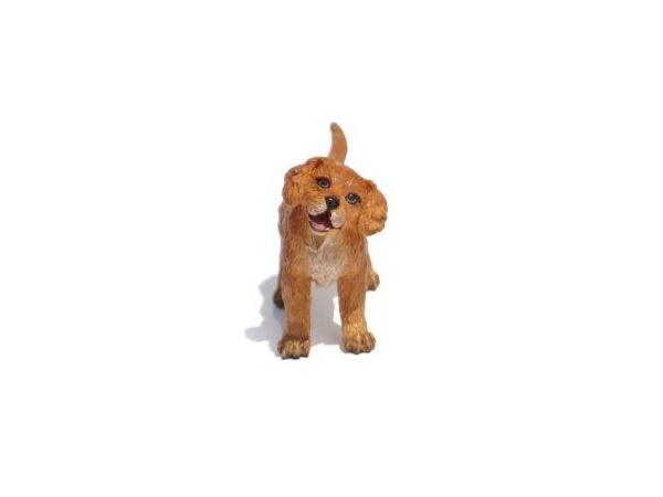 Eli (Golden Puppy) 600x450
