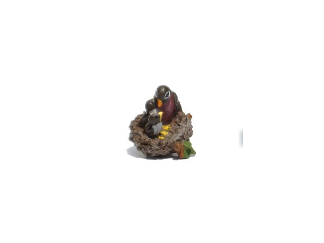 Robins Nest 640x480