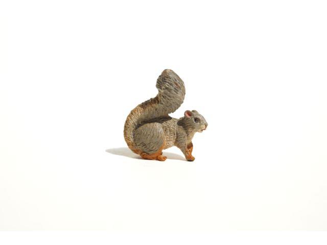 Squirrel 640x480