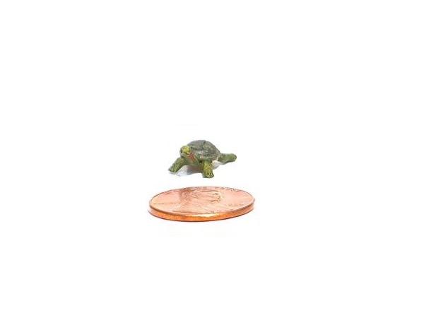 Turtle 600x450